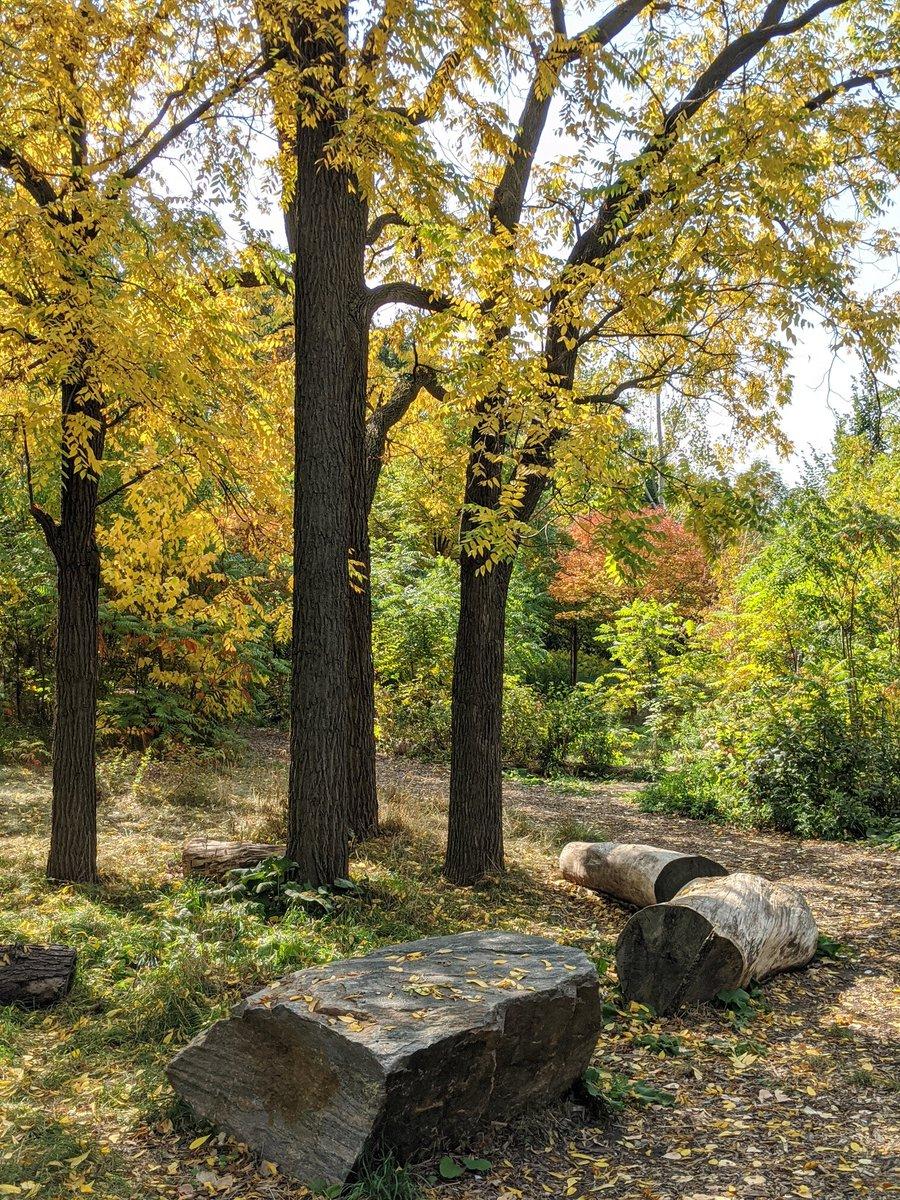 RT @gillisgreen205: Fall beauty. Summer warmth. #PerfectDay @downsviewpark https://t.co/ZBhfAG6F1j