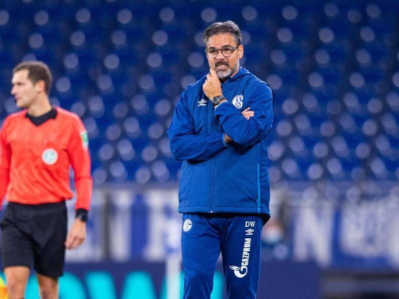 "NRW: Schalke-Coach Wagner: ""Ich kann Teil der Lösung sein"" https://t.co/pC8oycu4Hv https://t.co/bAuHgaMYZn"