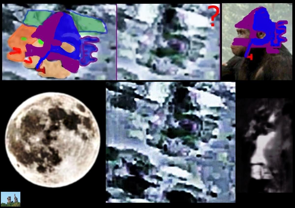 La #luna . 🐒🐵👨🦲👨 #geología #ciencia #arqueología https://t.co/xOOZQpKMRr