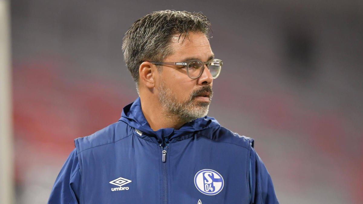 Laut verschiedenen Medienberichten soll sich der FC Schalke 04 in den kommenden Tagen von Cheftrainer David #Wagner trennen.   Da es jedoch keine verifizierten Angaben gibt empfehlen wir ruhig zu bleiben. Im Fall Wagner wurde noch nichts offiziell kommuniziert.  #S04   #Schalke https://t.co/CUPtjzJU49