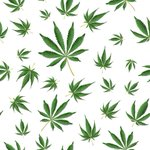 Image for the Tweet beginning: #cannabis #marijuana #weed WORLDWIDE EDUCONNECT