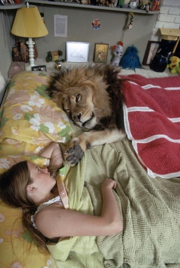 In six words or fewer, write a story about this photo. #sixwordstory #WritingCommunity