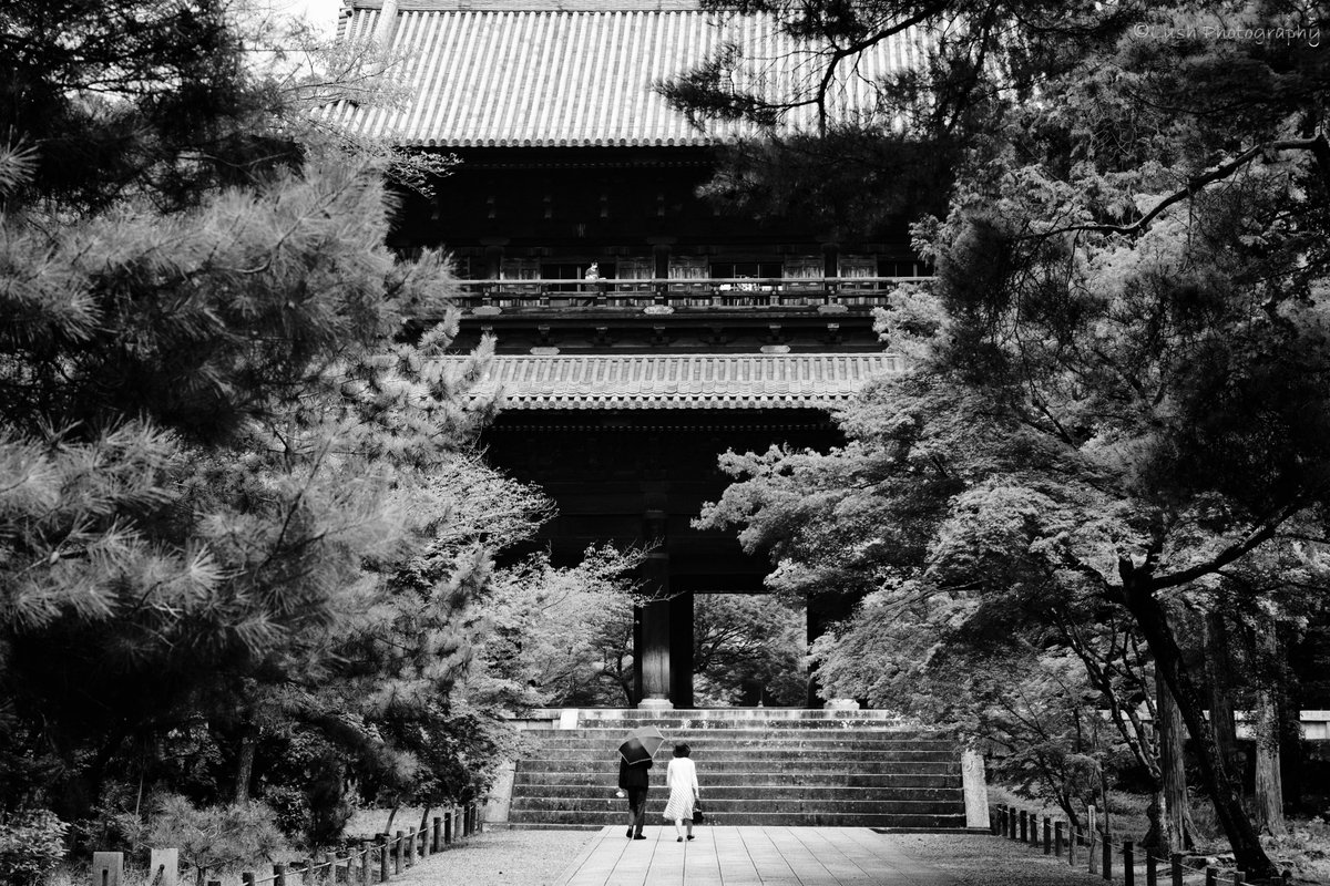 location 南禅寺 Kyoto Japan dete          2020.8 #BnW #bnwphotography #bnw_captures #Monochrome #blackandwhitephotography #monochromephotography #モノクローム #blackandwhite #team_jp_モノクロ #ファインダー越しの私の世界 #bnw_inst #bnw_rose https://t.co/0wQ0Owl3Yr