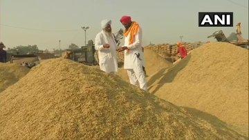 पंजाब में धान की खरीद शुरू, 30 नवंबर तक बेच सकते हैं किसान