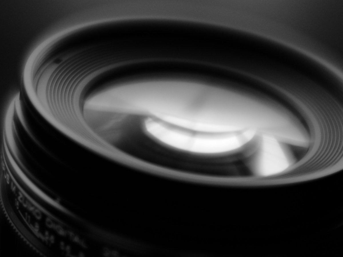 瑞光を #velvet56 で。 #zuiko #OLYMPUS #olympusomd  #lensbaby #monochrome #blackandwhite https://t.co/2BkZ72xYwS