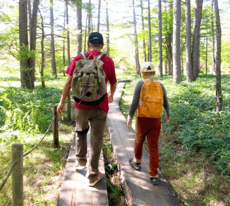 涼しくなってきたら 鎌倉ハイキング!! おすすめ7コースを紹介  詳しくはコチラ→https://t.co/f750SxijoK  #鎌倉 #ハイキング #ハイキングコース #絶景 #旅 #旅行  #歩いてみたブログ #iwalkedblog https://t.co/bBn1DIfFBQ