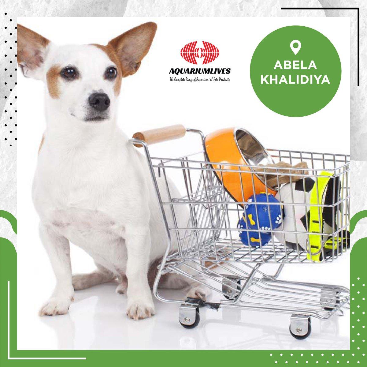 All your pet supplies, available at Aquarium Lives at Abela Plaza, Khalidiya 🐶 🐱   #souqplanet #smartshopper #onlineshopping #groceryshopping #inabudhabi #dubai #alain #uae #vegan #madinatzayed #safeplanet #souqplanetplaza #socialdistancing https://t.co/yXJHWvJhOr