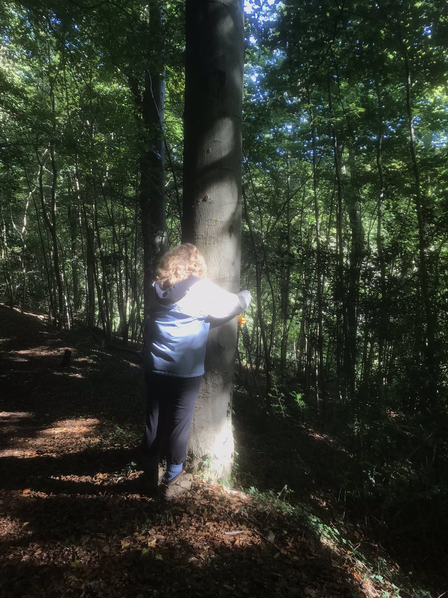 When did tree hugging become an insult? Because of course it's the most natural thing in the world. Hug away people! #treehugger https://t.co/4mNewqbtSu