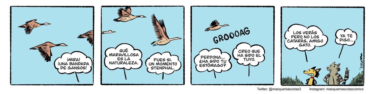 #Masquemascotas 27 septiembre 2020 #humor #perros #gatos #comicstrip #cartoon https://t.co/CdcGvnAhOj
