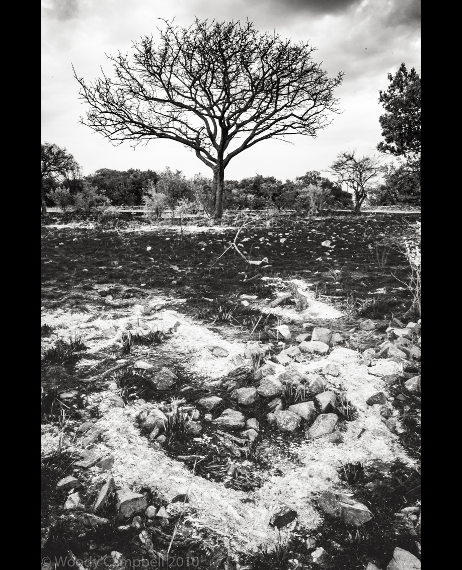 Looking back to Tanzania  on this day 10 years ago: day 315 of 1 photo every day for the rest of my life. Poachers burn. #BlackAndWhite #BNW #Photo #Monochrome #DailyPhoto #Leica #Monochrom #Tanzania https://t.co/Rp04yfH9A8