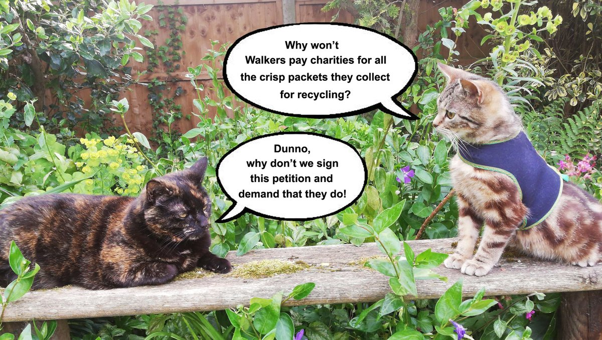 @walkers_crisps why are you not paying charities for all the crisp packets they send in to be recycled? #payupwalkers #singleuseplastic #recycling #felinecare #charitiesincrisis https://t.co/2EUj6LxKHw