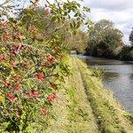Image for the Tweet beginning: Beautiful weekend for countryside walks.