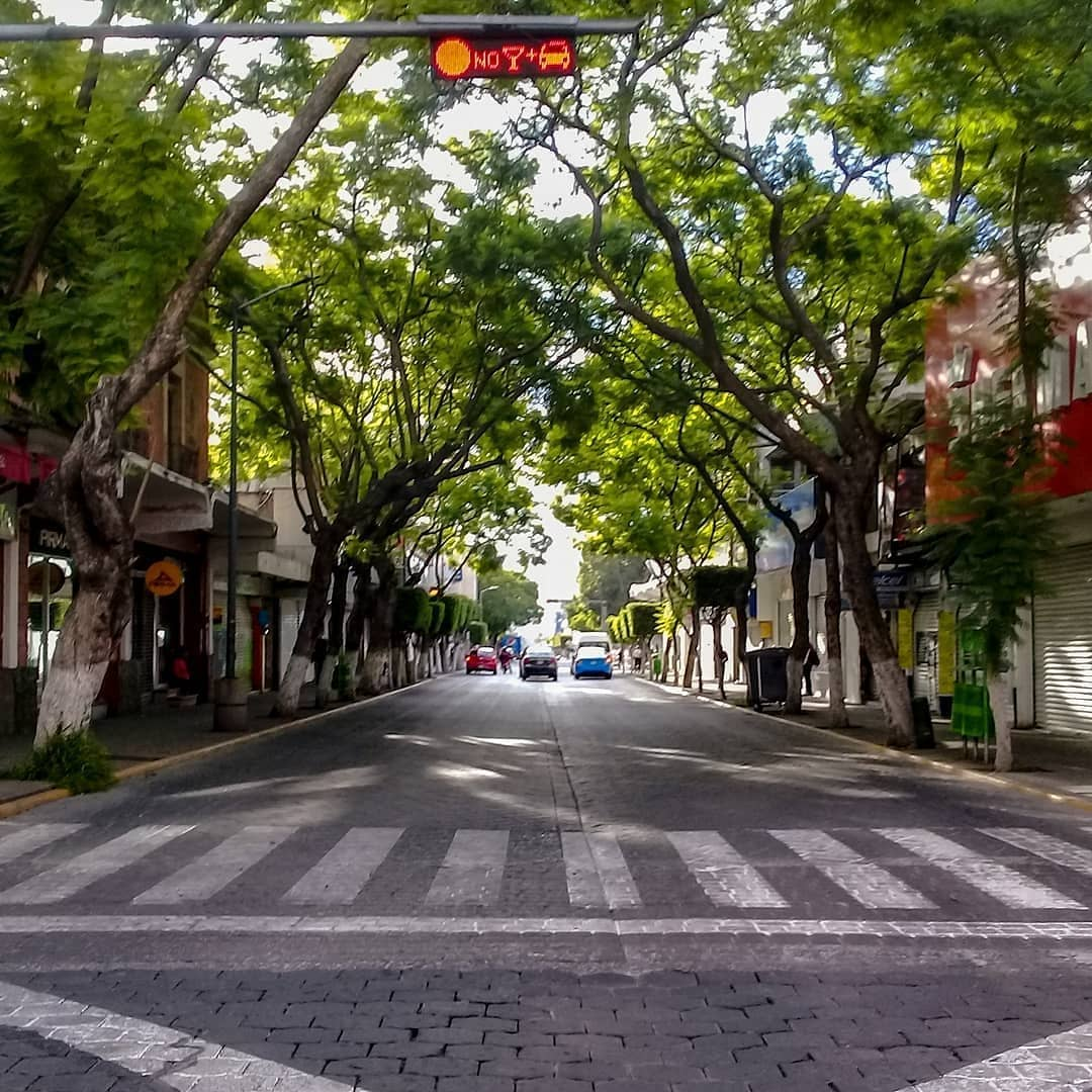 Libre y aburrido en el centro de #Tehuacan haber que hay en el parque #Juárez traigo coche alguien ??? 🤔🤔 https://t.co/wV6T1qHCX1
