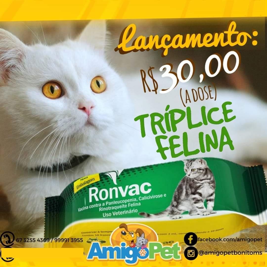 #comprasonline #petshop #lojavirtual #amigopet #cachorro #gato #pet #rações #delivery #diskentrega #dicavet #prevenção #vacina #cachorro #gato #veterinaria #veterinario #saudeanimal Loja virtual!! 📲 🖥https://t.co/66Cj6FHYQB  📱Delivery 67 99913955 ☎Telefone fixo 67 32554369 https://t.co/o3vBfXXMDX