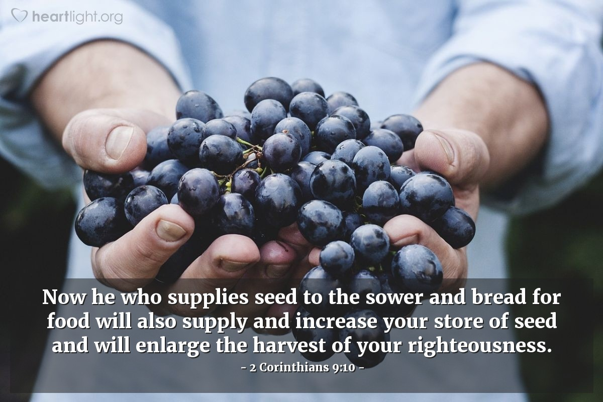 Don't give up, keep sowing.  #Work #Share #Preach #Gospel #Good #News #HolySpirit #Righteousness #Sow #Farming #Supply #Food #Bread #Seed #Harvest #BePrepared #Jesus #Christ #God #CNYC https://t.co/ez3yagW4Lm