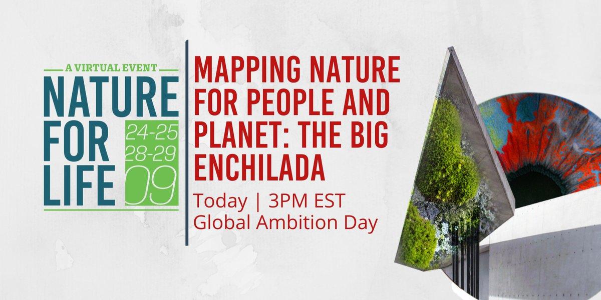 🌍 #Spatialdata is essential for averting #biodiversity loss, thwarting #climatechange, and repairing our relationship with #nature. Join us as we envision a planetary response to a planetary emergency–today, 3 PM EST at our #NatureforLife Hub!  https://t.co/kHYmCroAoM https://t.co/j8Cy608xg9