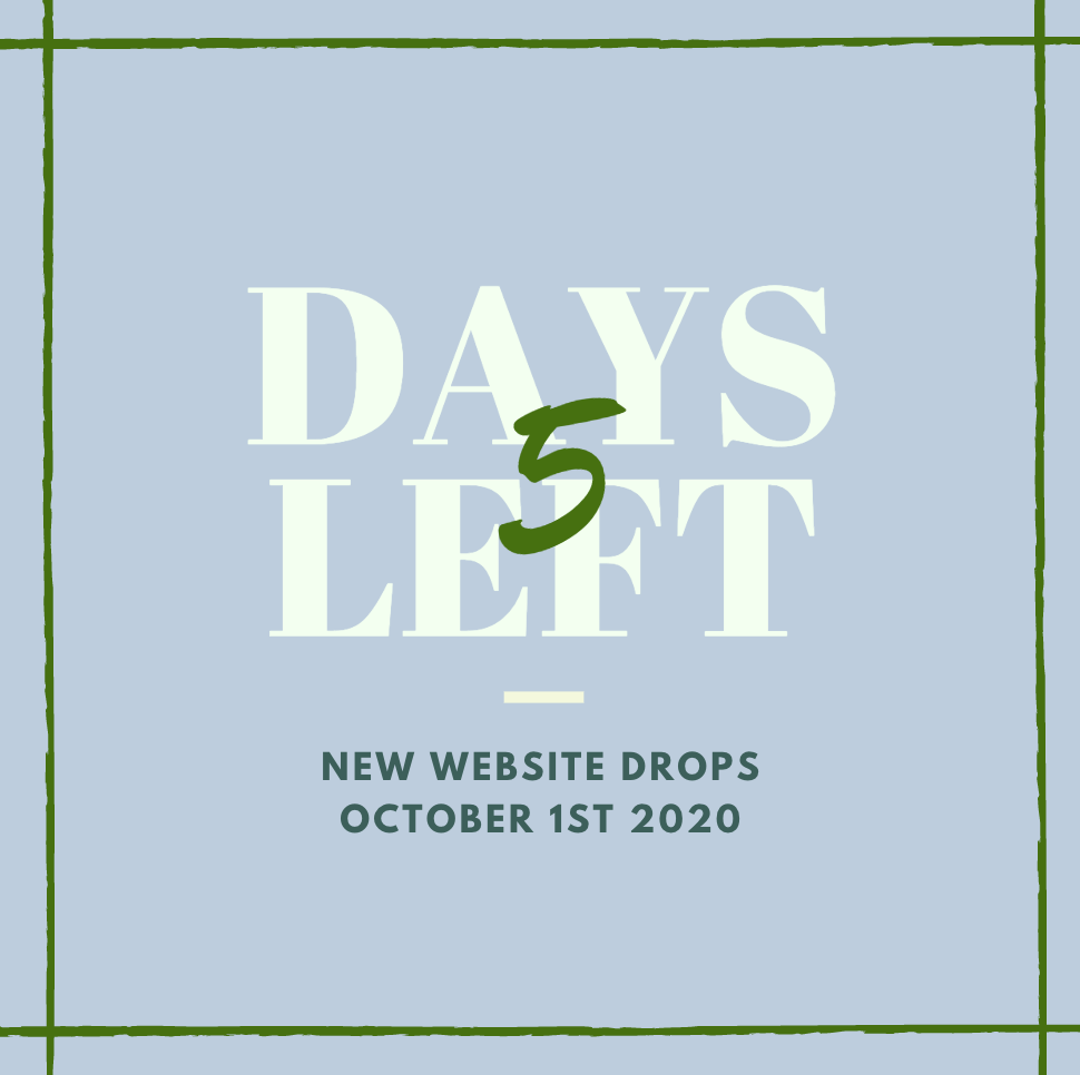 Only 5 days left until our new website launches! Be sure to set a reminder for October 1st!   #sustainable #ecofashion #sustainablefashion #entrepreneur #shopsmall https://t.co/WWfhounx1P