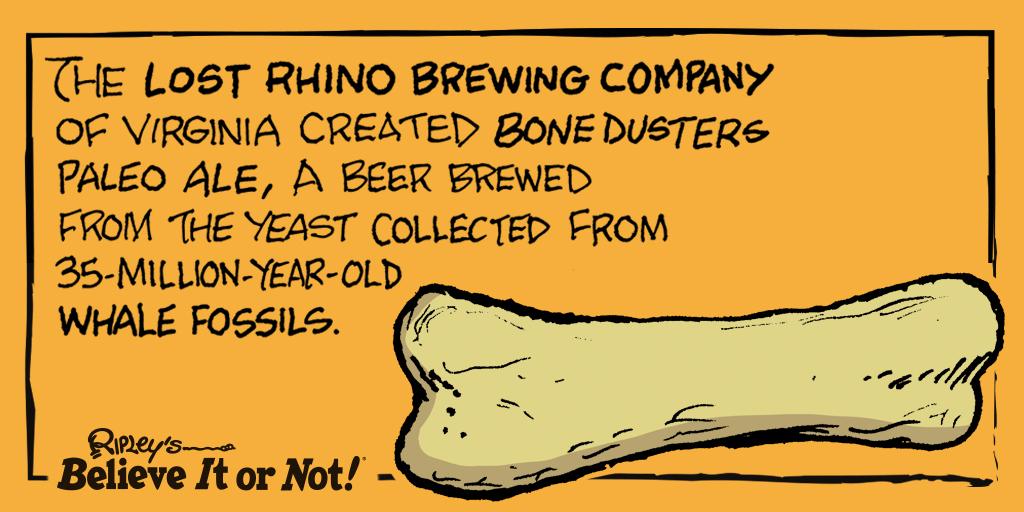 Taking their #brews down to the bone! 🐋 #TheLostRhinoBrewingCompany https://t.co/d62D2EGfxS https://t.co/3rZXgbMHtQ