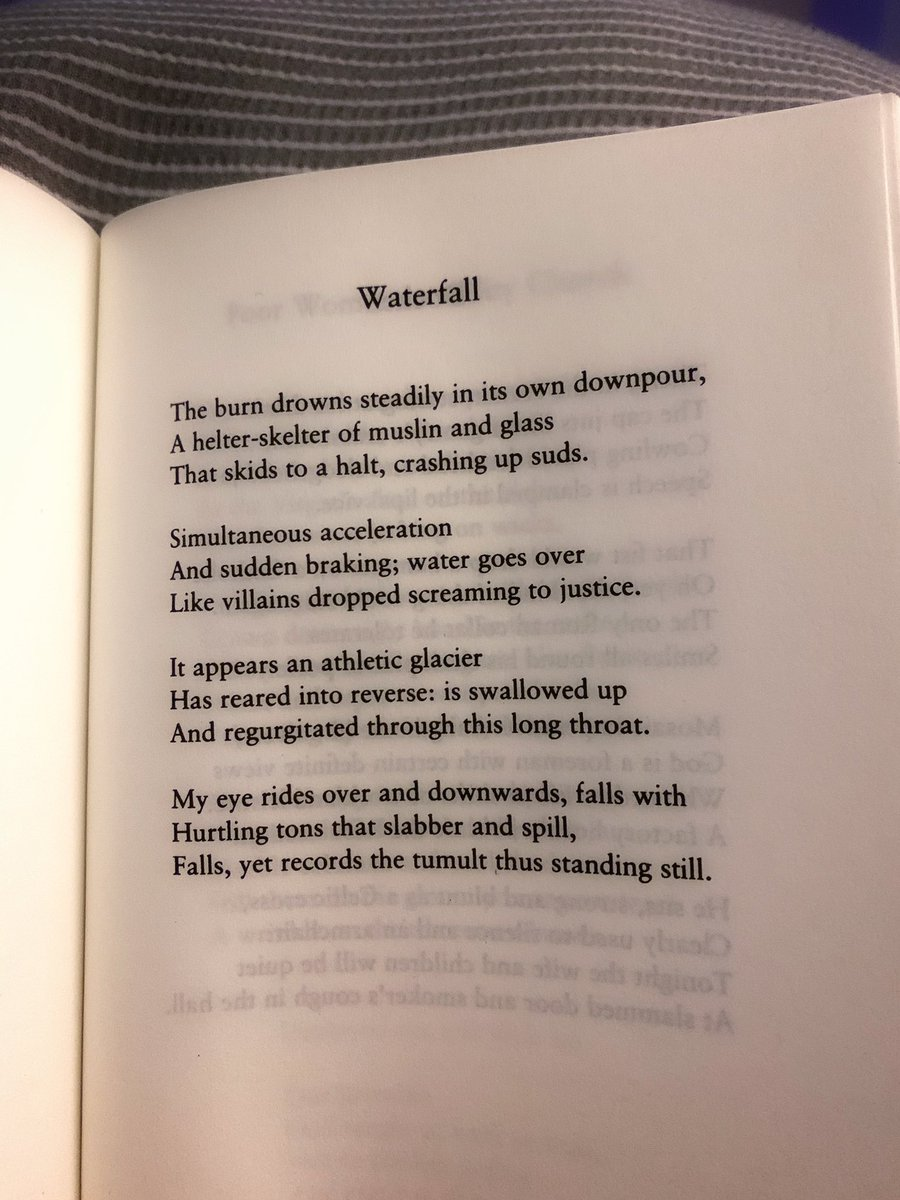 Sunday night reading.  Seamus Heaney's words can always restore focus and order to confused minds....to mine anyway  #DeathofaNaturalist #SeamusHeaney #waterfall #Irishpoet #poetry https://t.co/zrgk7kjlnQ