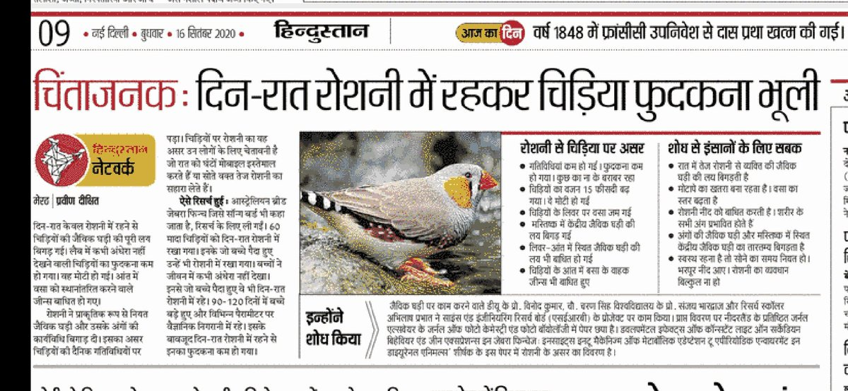 Our research paper has been picked by one of the biggest hindi newspaper #hindustan  https://t.co/ryukfNpZo3 Congratulations to authors. @ELSneuroscience  @ElsevierConnect  @serbonline  #zebrafinch #lightatnight #biologicalrhythm https://t.co/xijgE5LV1t