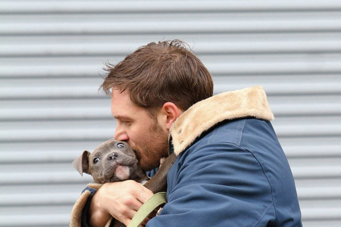Happy birthday Tom Hardy, keep going, you\re marvellous mate.