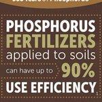 Image for the Tweet beginning: ⌛ #DYK that phosphorus fertilizers