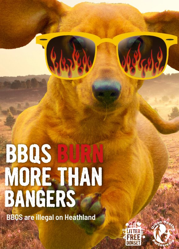 We currently have an Amber warning for wildfires for the next few days so please take extra care when out enjoying the good weather and avoid using disposable #bbqs in the countryside. #wildfires #wildfireaware #respectprotectenjoy #enjoyitdontdestroyit #lovedorset https://t.co/YYgV0tgkel