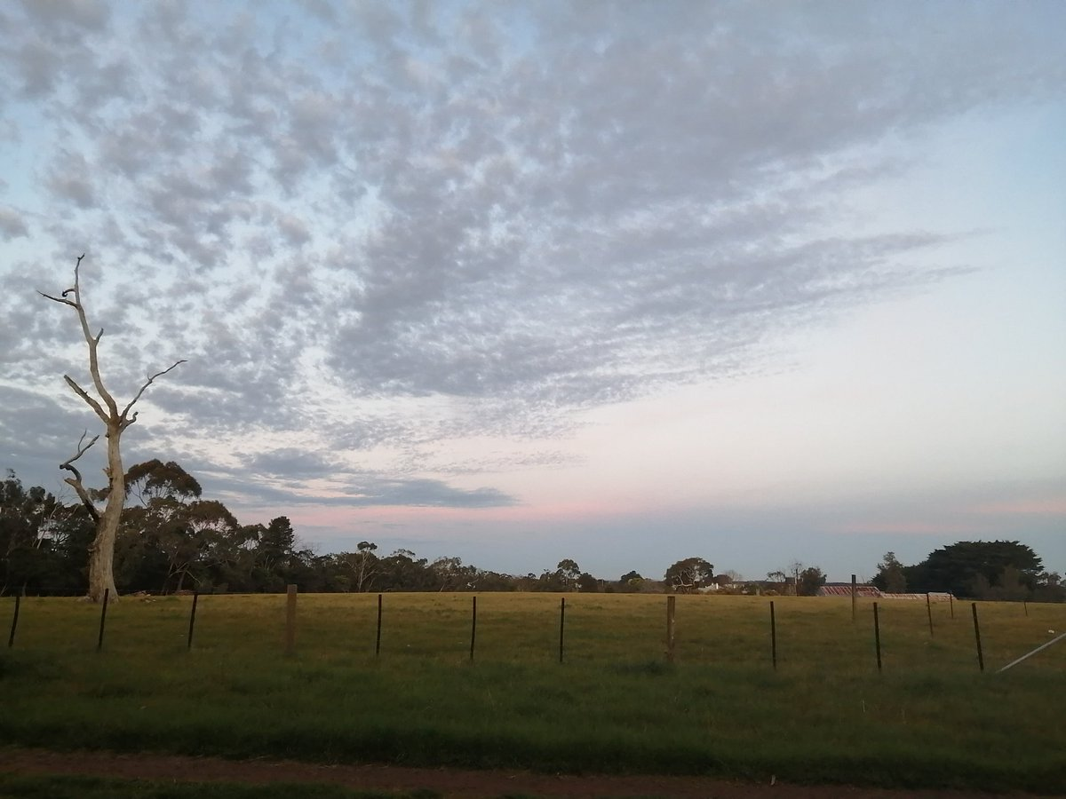 Lovely evening here @KristenWaldron3