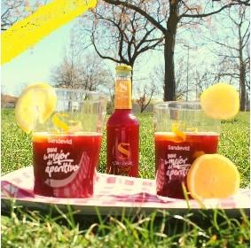Cómo echamos de menos los picnics del fin de semana #vegan#govegan#veggie#comidasaludable#dietasana#veganfood#comidacasera#habitossaludables#singluten#aperitivo#sandevid#tintodeverano#sangria#rebujito#verano#summer#amigos#fiesta #quebuenosandevid https://t.co/ClasEgyMzh