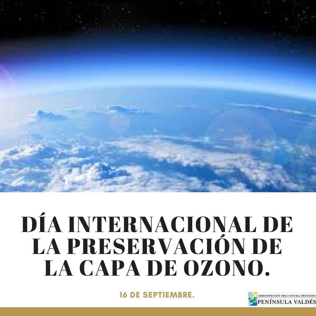 ¡Sigamos trabajando y recuperando el ozono juntos! 🌎💜🇦🇷  #PeninsulaValdes #anp #mundo #Ozono #proteccion #humanos #aire #vida #Chubut #Argentina https://t.co/wpYZ6Xh7QV