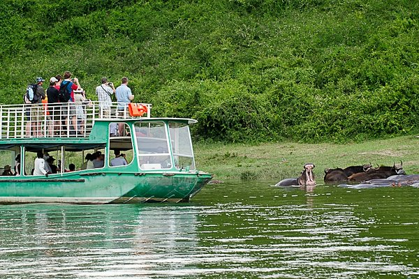 The Kazinga Channel launch trip in #queenelizabethnationalpark offers the best chance of seeing #wildlife in particular elephants, buffalo, hippos, water birds, crocodiles with the best #photography. #birding #visituganda #nature #safariuganda #freshwaters #vacation #boatsafari https://t.co/En4NZAt6tT