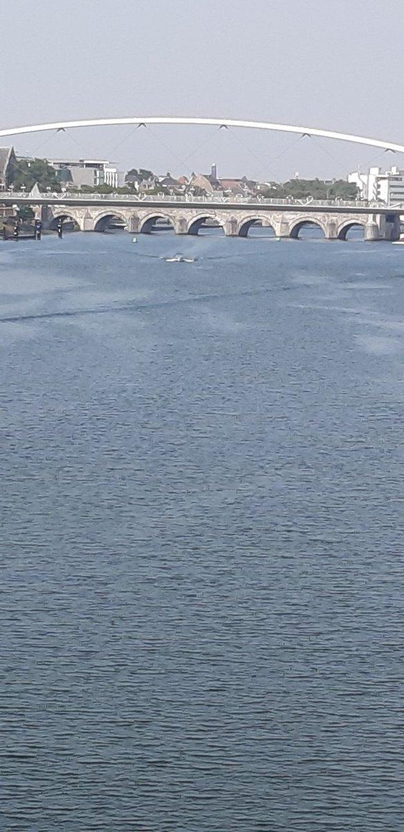De mooiste brug van het land. Daarna komt de Erasmusbrug in #Rotterdam @magnifiekZL https://t.co/ecJESvOoga