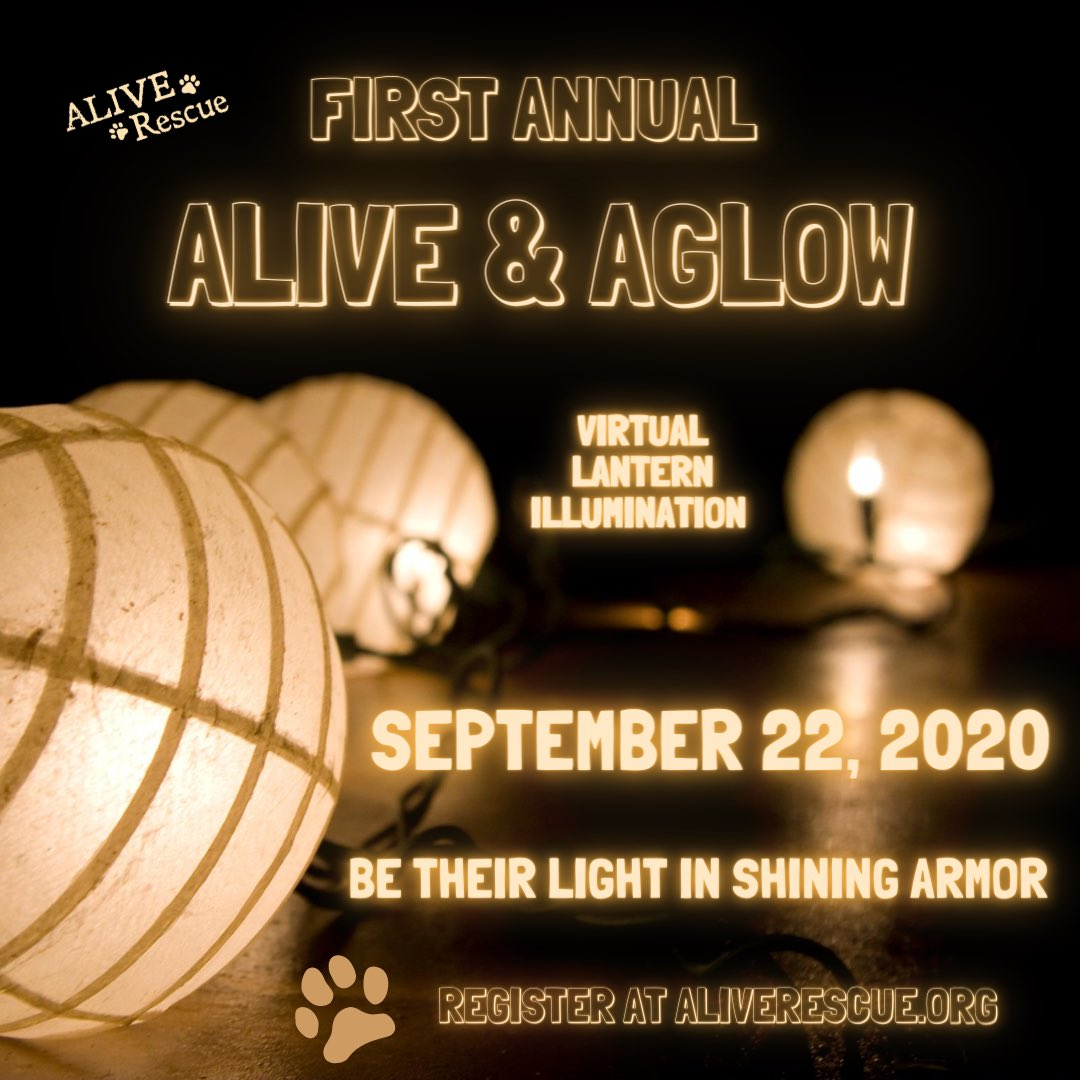 Our 1st Annual Alive & Aglow is less than ONE WEEK away!  Join us for a magical evening  as we light up the night.  We are so close to our fundraising goal and need your help to get there. Register today at https://t.co/FyffNXJKoj (link in bio).  #aliveandaglow https://t.co/G653nFZJxP
