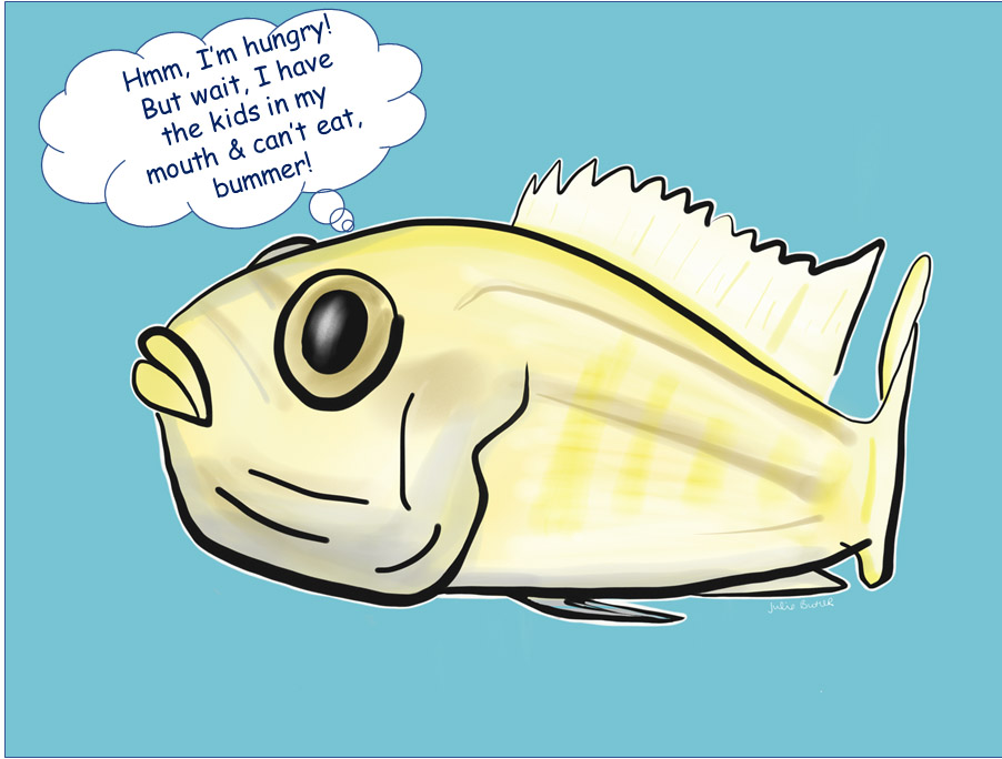 New Burt's Blog post! Some short research stories from Toni and the Geaux Girl Fish Power group!  https://t.co/DYoDeOx7Xu #scicomm #BurtsBlog #sciart #cichlid #fishes #outreach https://t.co/tk5JLbDqJO
