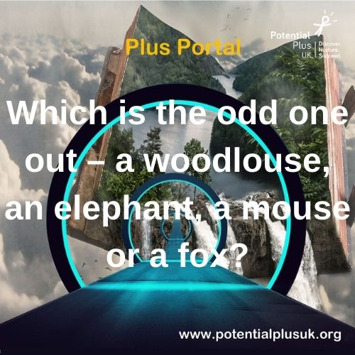 Which is the odd one out? Comment your ideas below #PlusThinking #PlusPortal #LearningLaunch #HomeLearning #Giftedness #MoreAble https://t.co/IobTjJMjmL