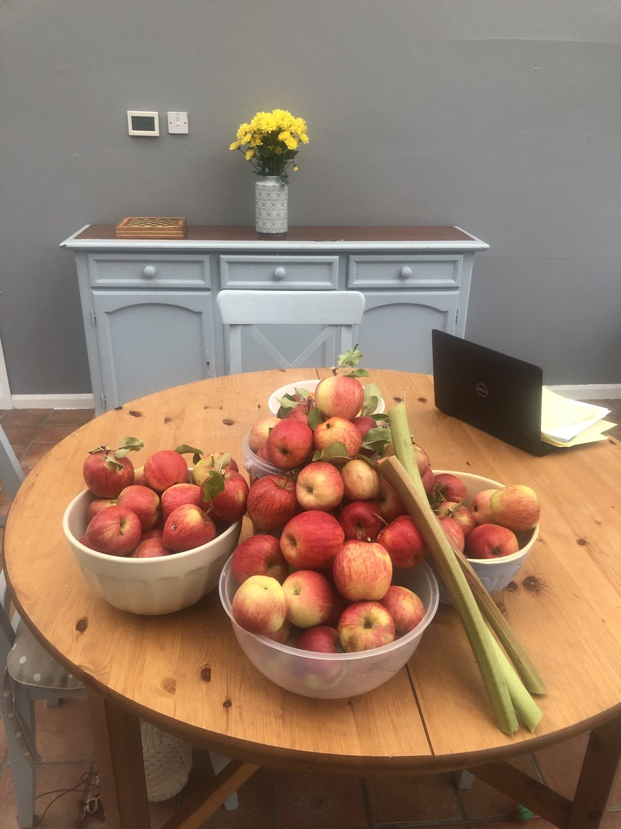 Really pleased with our last harvest from the garden, even had the 6 year old up the tree picking apples! #organic #growyourown #Farsley #Westleeds https://t.co/TpRAxevi0Q