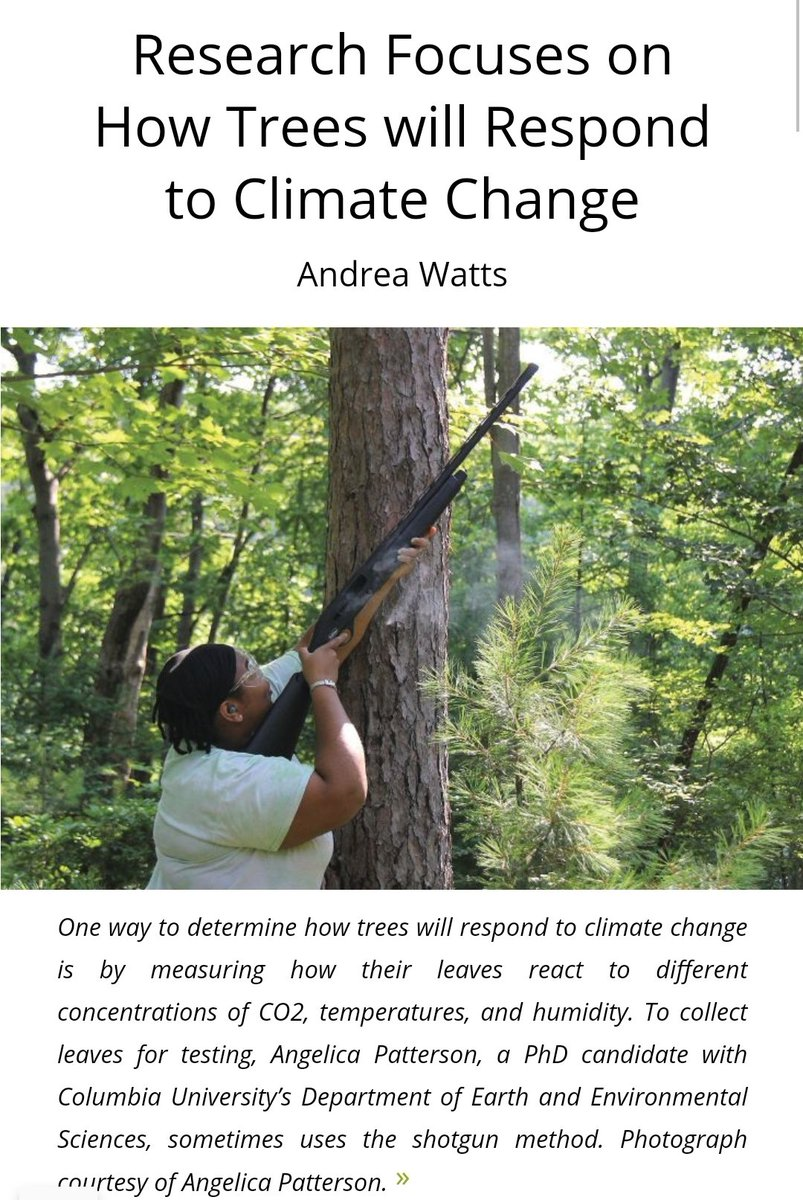 Curious about what my research is about at #BlackRockForest? Check out the September issue of the Forestry Source by @foresters. A huge thank you goes to @WattsInTheWoods for writing this feature article! #climatechange #blackinnature #BlackBotanistsWeek  https://t.co/1WX1cl2xRw https://t.co/asEFQrVEfp