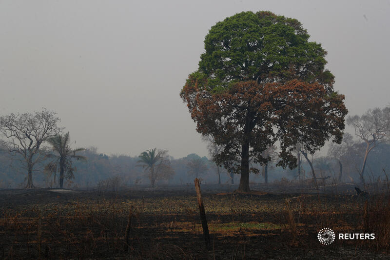 None of the main targets had been met, the report said. However, there were signs of progress. For example, while global deforestation was not reduced by the goal of at least 50%, it did slow by about a third over the last 10 years https://t.co/dEvzlI5mvu 5/5 https://t.co/d62QwMdz9l