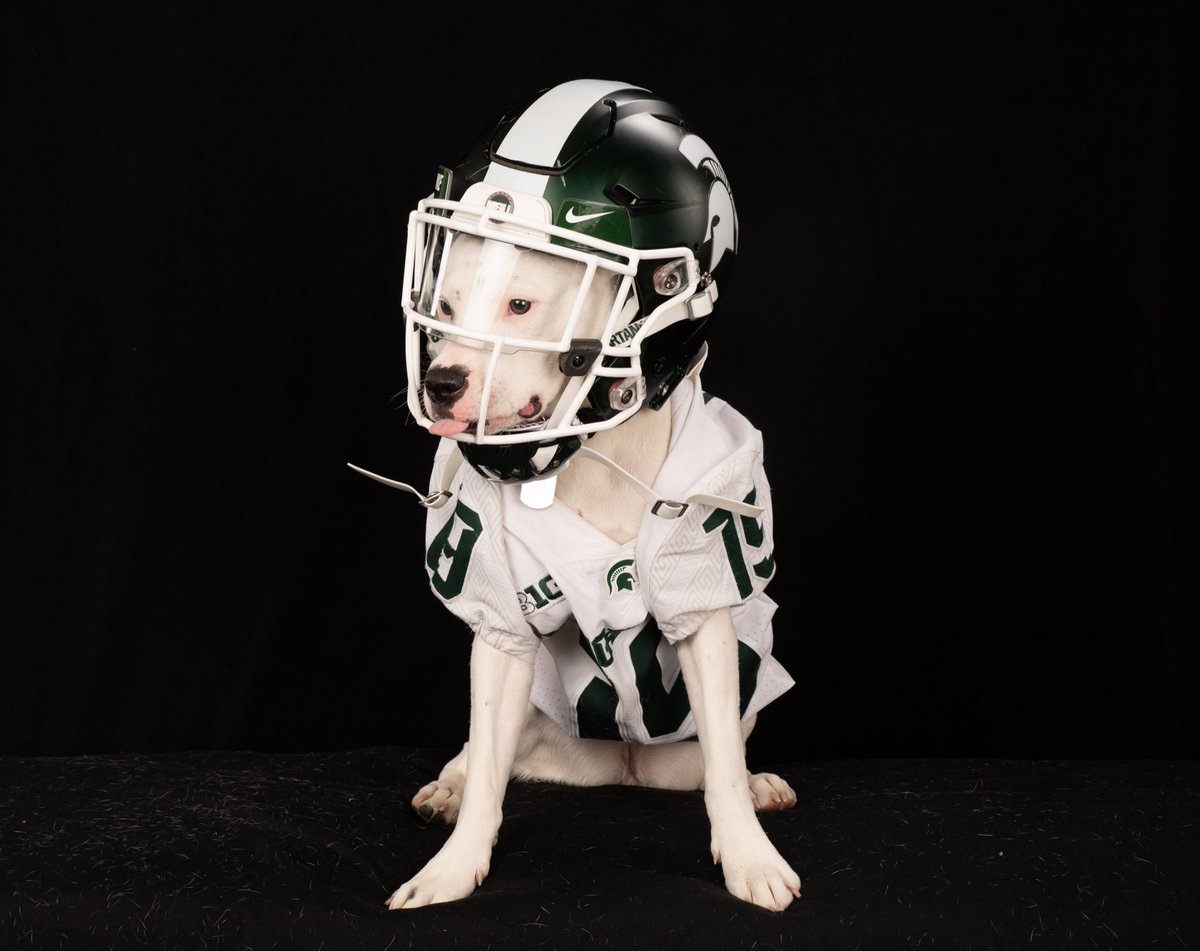 Did we hear y'all say B1G back? Wishing the boyz best of luck from Roxy and Remi 💚 #spartandawgs https://t.co/1WSqD56ubi