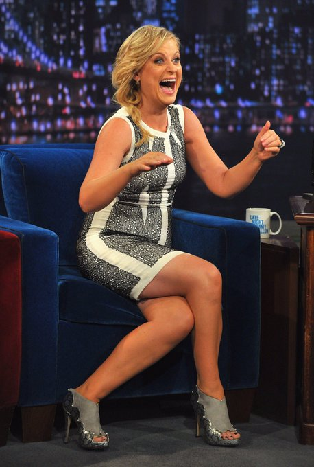 Wishing Amy Poehler The Funniest Comedian Women a happy 49th Birthday next year you will be 50 wishing you the best
