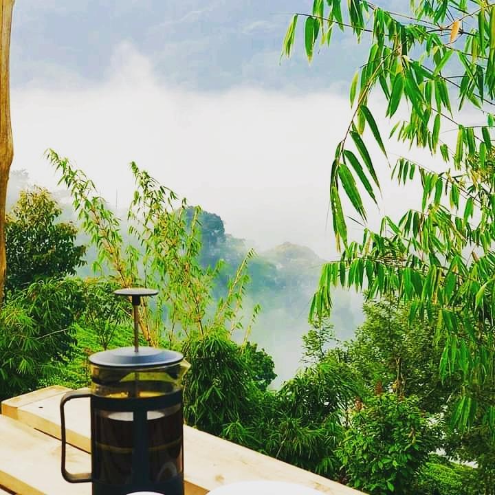 Perfect weather for a cup of coffee. #NaturePhotography  #naturelovers #KhalifatAfricaToursandTravel #TourUganda https://t.co/KNGriu6DND
