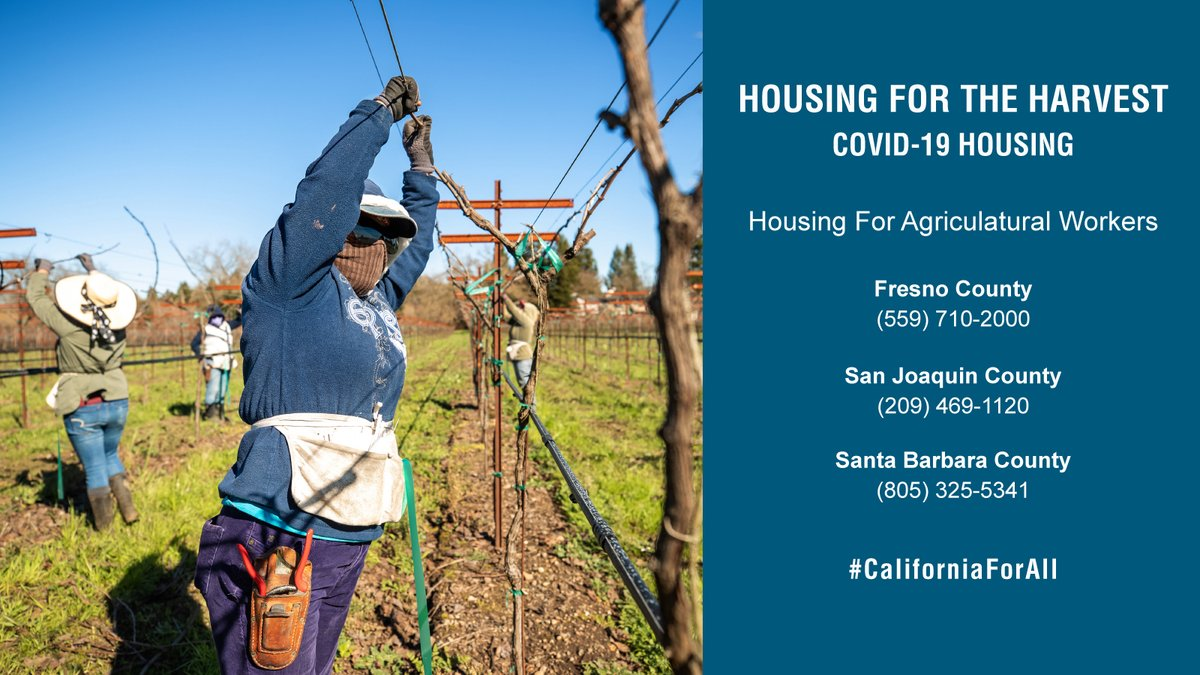 #Agriculture workers: #HousingForTheHarvest is sponsoring hotel rooms to shelter workers exposed to #COVID-19 at no cost. Immigration status does not affect eligibility. Contact: https://t.co/awuAeSG5lp  #farming #CaliforniaForAll @fresnocounty_ca @sanjoaquincounty @countyofsb https://t.co/7W0jNfm79a