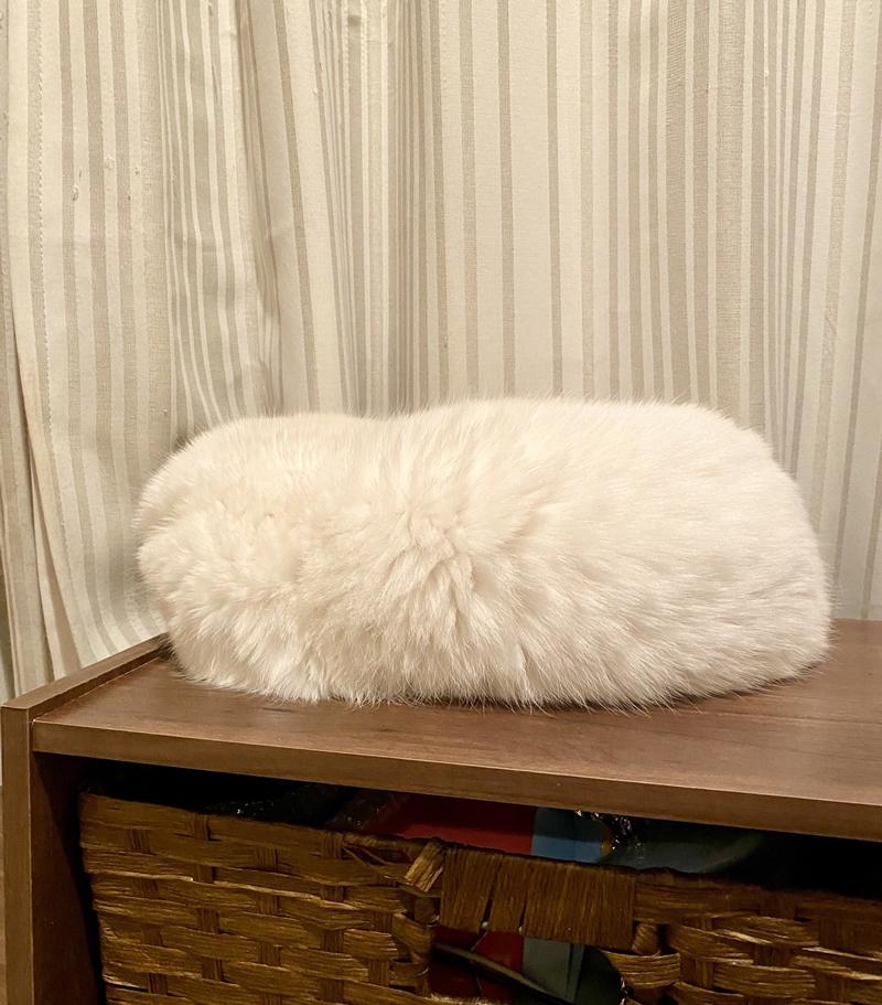 """""""寿司のシャリ""""みたいなモフモフの正体は……? おいしそうな猫ちゃんに「笑った」「何のせよう?」の声"""