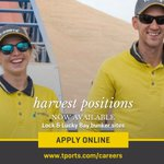 Image for the Tweet beginning: Harvest positions are now available