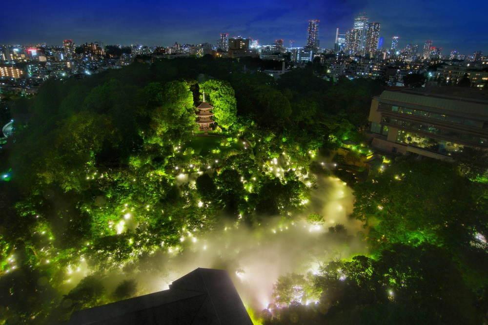 """ホテル椿山荘東京""""触れる雲海""""や約1万本の椿が庭園に、幻想的なライトアップも -"""