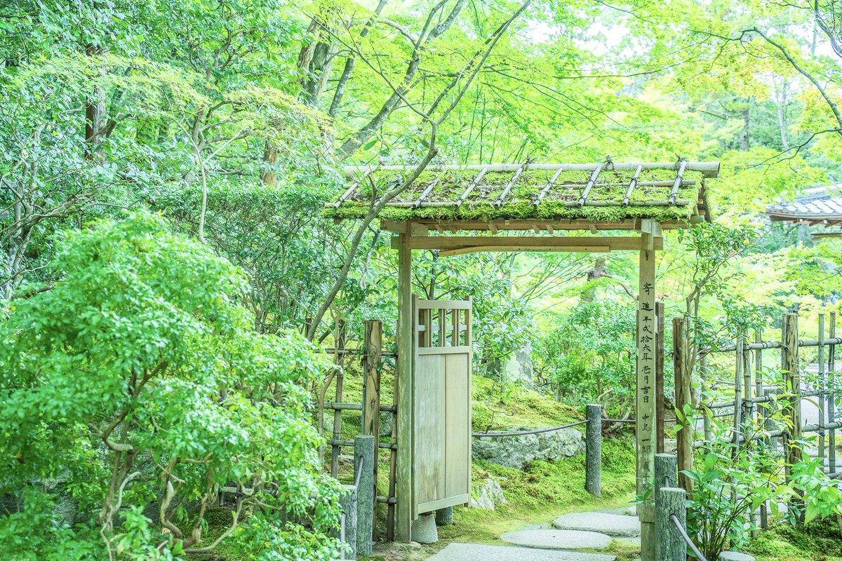 京都には、ジブリのような世界があった。