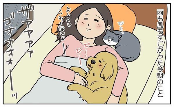扇風機に負けた……!強い雨風におびえていた犬猫→しかし翌朝…… 犬猫のあっさりすぎる反応に戸惑う飼い主の漫画 -