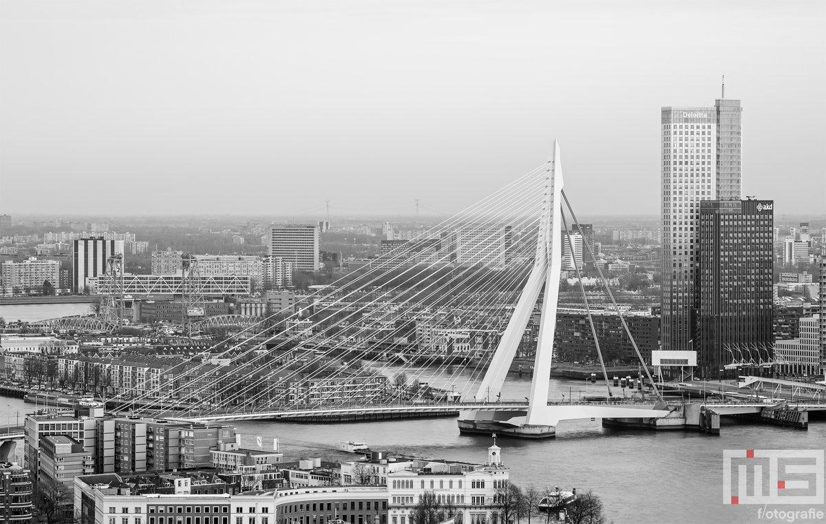 De #Erasmusbrug in #Rotterdam door @marcvanderstelt vanaf heden op 'bijna' elke formaat (vierkant, panorama, 3x2, enz) #canvas #fotoprint en #behang verkrijgbaar. Bestel nu via https://t.co/RS6jZSCBSL #art #fineart #kunst #wallart #wallcover #dibond https://t.co/F4IuoZuaO7