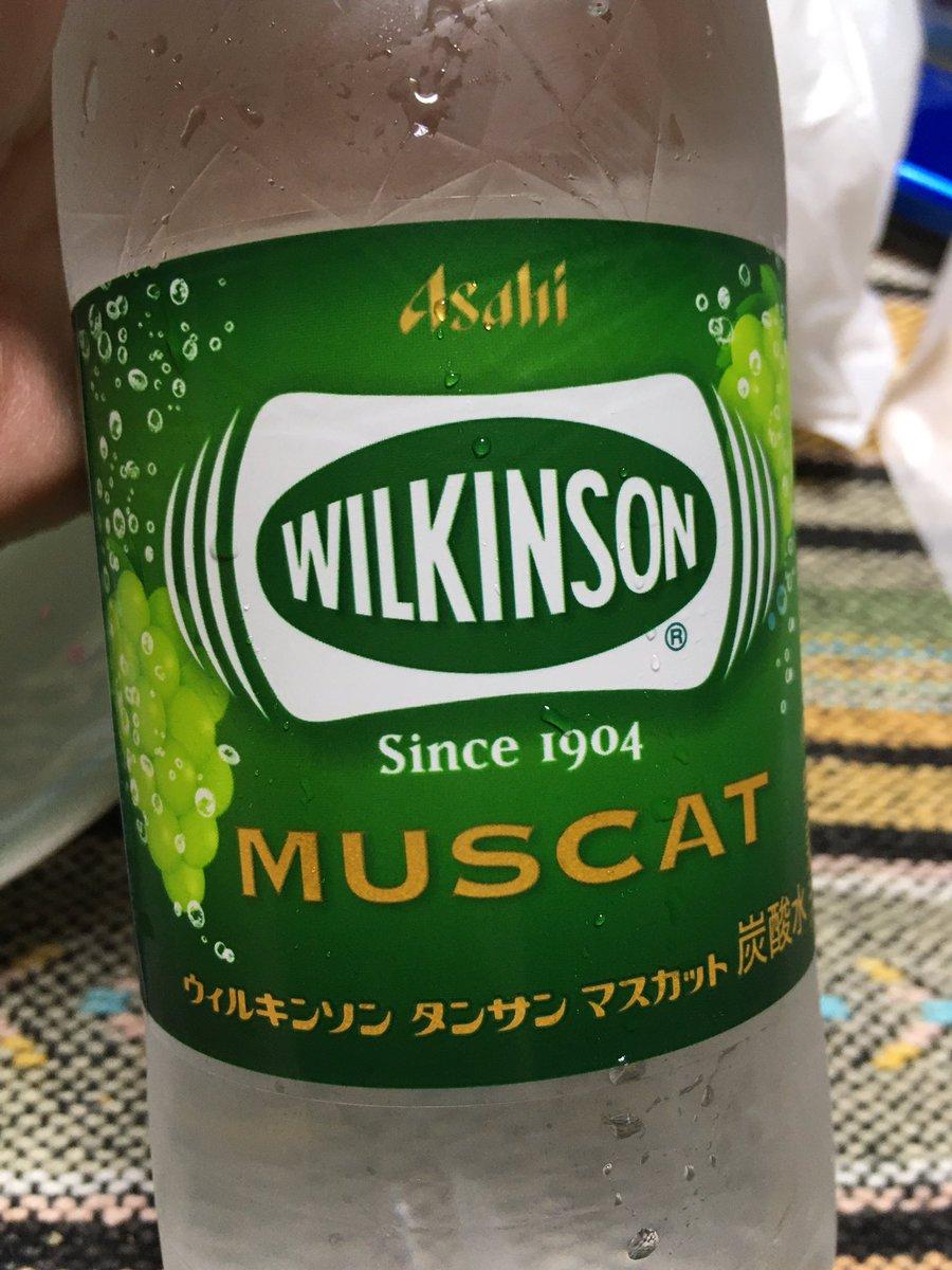 マスカット ウィルキンソン