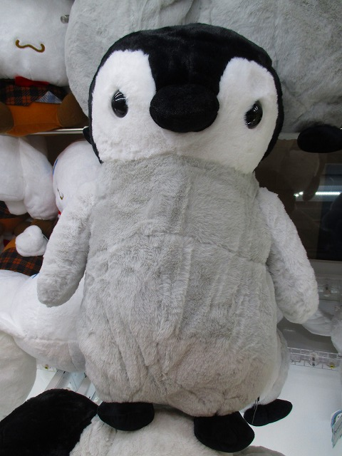 ペンギンアイランドBIG 入荷しました♪ #ペンギンアイランド https://t.co/CaCme1cPxM